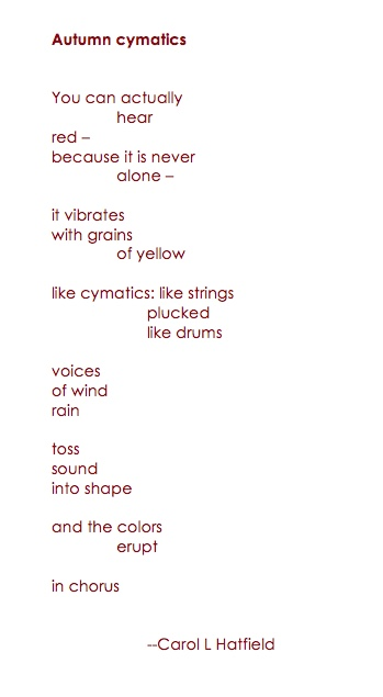 Autumn Cymatics