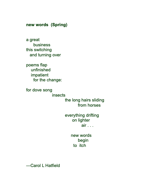 new words (Spring)