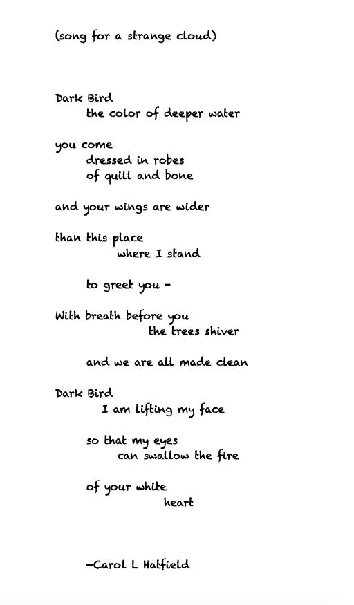 Dark Bird-song for a strange cloud