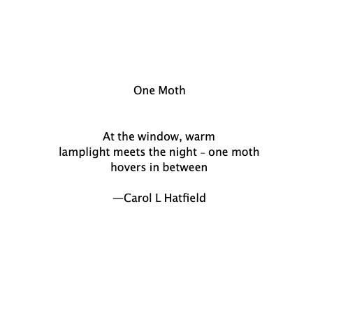 HAIKU - One Moth